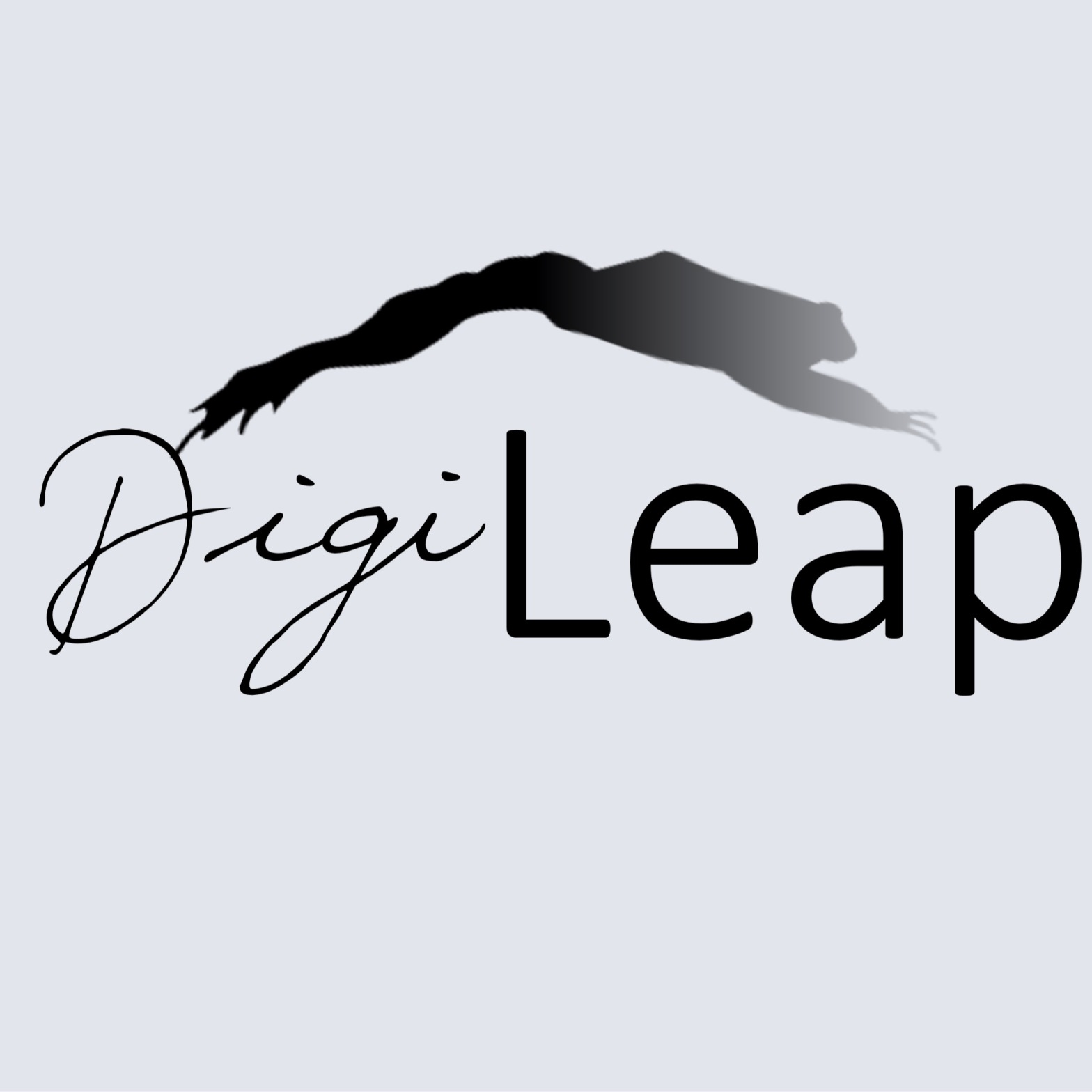 Digi-Leap Logo